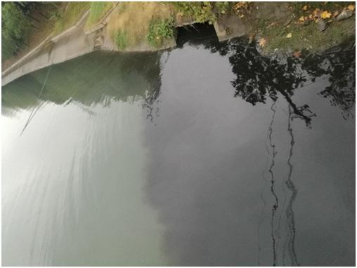 荆州市开发区三湾路与西干渠路交汇处生活污水直排西干渠